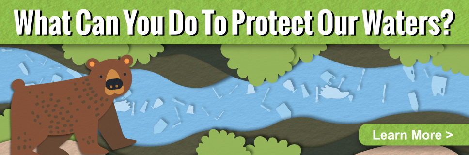 Learn ways you can help protect Arizona waters
