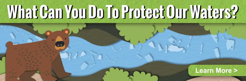 Learn ways you can help protect Arizona waters
